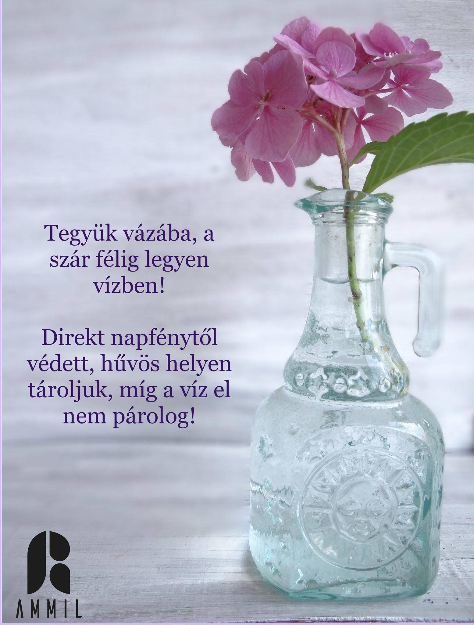 Tegyük vázába a virágot, melynek szára féligbeleér a vízbe!